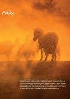 Namibia das Reisemagazin von Afrika Traummreisen - Seite 3