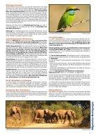 Orient- und Fernreisen - Seite 3