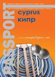 Passport Cyprus No. 2