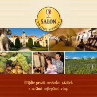 Wine Salon of the Czech Republic