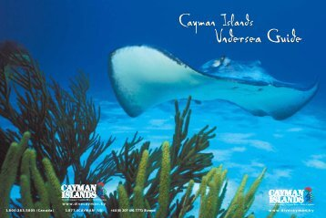 Undersea Guide