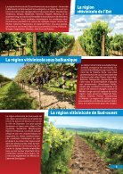 Wine and Cuisine - Page 5