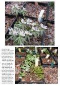 Bulb Log Diary - Page 3