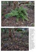 Bulb Log Diary - Page 5