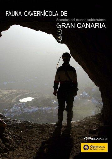 Fauna cavernícola de Gran Canaria. Secretos del mundo subterráneo