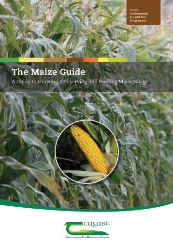The Maize Guide