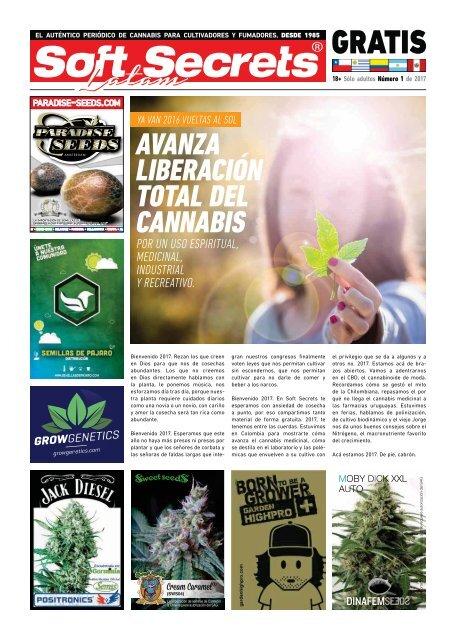cannabis contra los síntomas de la cepa del cáncer de próstata