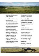As riquezas do Pampa Gaúcho - Page 2