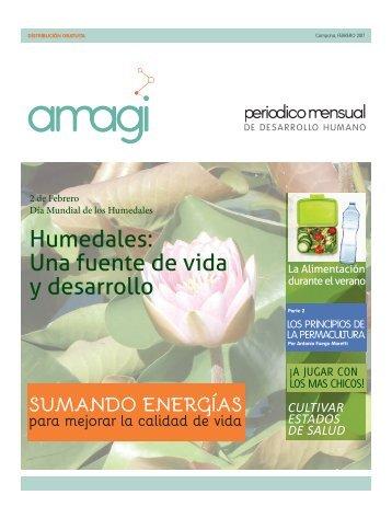 Periódico Amagi Desarrollo Humano - Febrero 2017