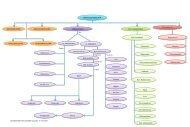 Mapa conceptual- Biotransformación