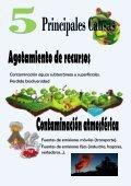 Ecosistema - Page 6