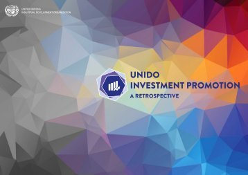 UNIDO INVESTMENT PROMOTION