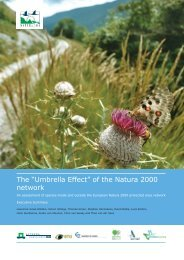 "The ""Umbrella Effect"" of the Natura 2000 network"