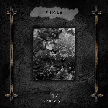 SILK-KA 2017