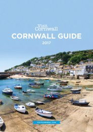 The Cornwall Guide 2017