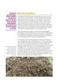 DAS REGENWURM-MANIFEST - Seite 7