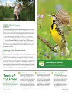 NCC Magazinespring 2016 - Page 5