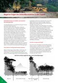 Papier - Seite 6