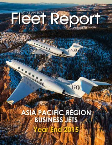 ASG Business Jet Fleet Report 2015 EN