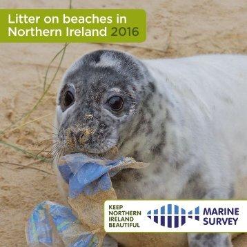 Litter on beaches in Northern Ireland 2016
