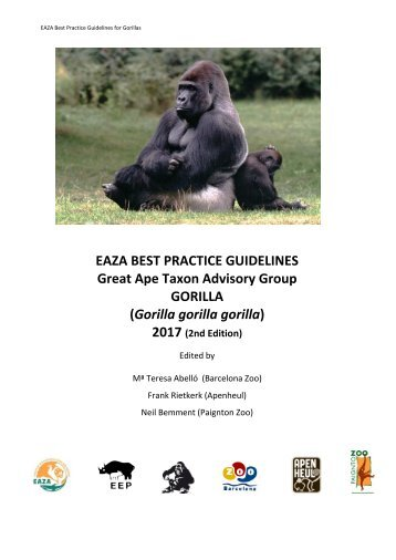 Stunning Gorilla Resume Contemporary - Simple resume Office .