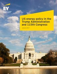 US energy policy in the Trump Administration and 115th Congress