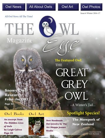 Owl Eye Issue 6 Winter
