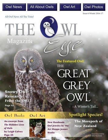 Owl Eye Issue 6 Winter