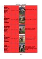 Waisenheim für Bullchen und Bullen 22 Bullen  - 12.02.17 - Seite 4