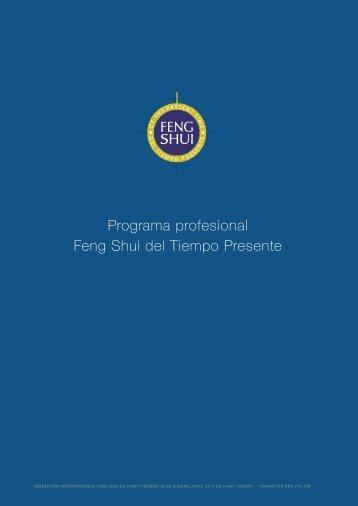 Programa profesional Feng Shui del Tiempo Presente
