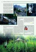 Der Zauber der Spagyrik - Brigitte van Hattem - Seite 2