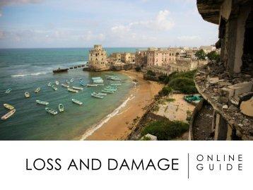 LOSS AND DAMAGE