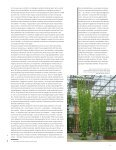 2009_4 - Balkon - Page 7