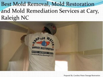 Best Mold Removal, Mold Restoration and Mold Remediation Services at Cary, Raleigh NC