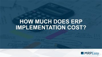 How Much Does ERP Implementation Cost
