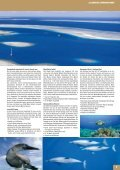FIJI - Seite 7