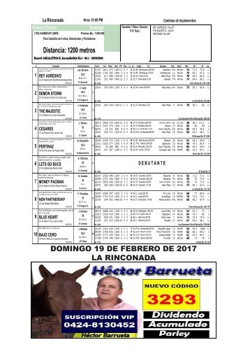 DOMINGO 19 DE FEBRERO DE 2017 LA RINCONADA