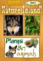 Nature Island First Edition
