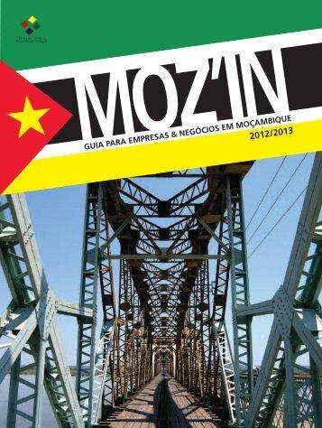 Moz_IN_02