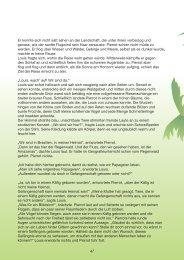52.Regenwald3