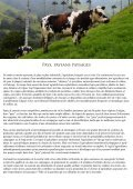 Pays Paysans paysages - Page 2