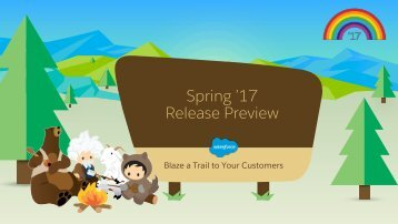 Spring '17 Release Preview