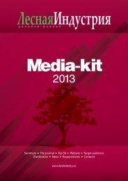 Media-Kit LI 2013