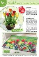 Jungborn Lieblingsstücke Frühlingsboten 2017 - Seite 4