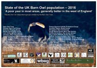 State of the UK Barn Owl population – 2016
