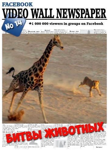 Video wall newspaper for Facebook No14