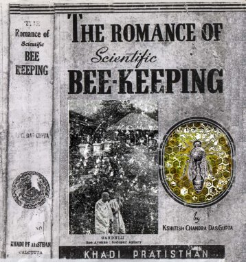The Romance of Scientific Bee-Keeping