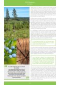 SUSTAINABLE FORESTRY - Page 4