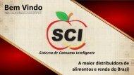 SCI Apresentação de Negócios 2017vns