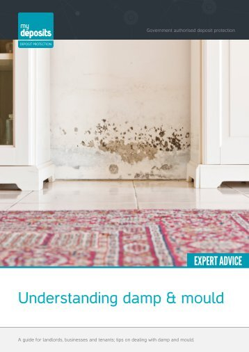 Understanding damp & mould